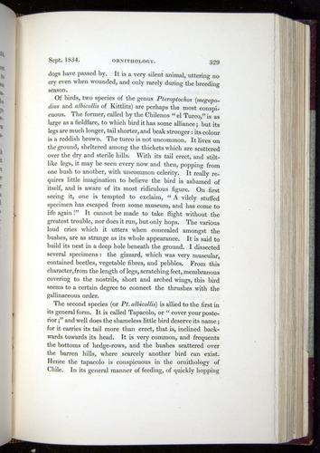 Image of Darwin-F11-1839-00329