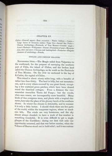 Image of Darwin-F11-1839-00333