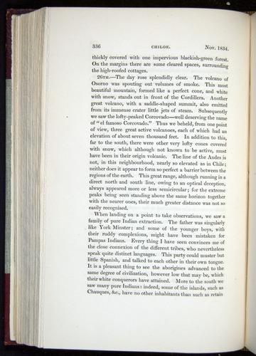 Image of Darwin-F11-1839-00336