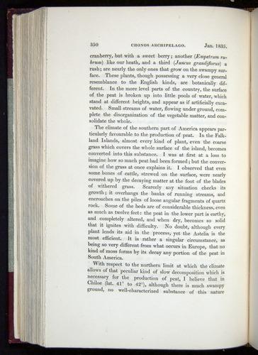 Image of Darwin-F11-1839-00350