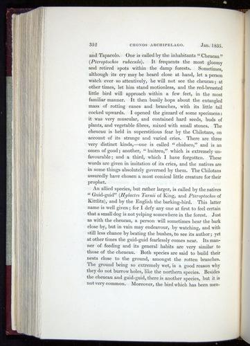 Image of Darwin-F11-1839-00352