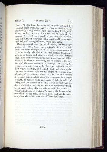 Image of Darwin-F11-1839-00355