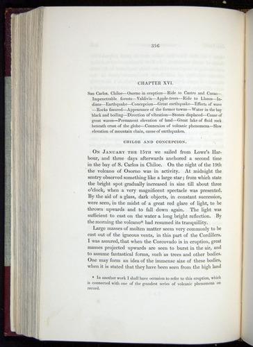 Image of Darwin-F11-1839-00356