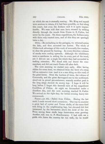 Image of Darwin-F11-1839-00362
