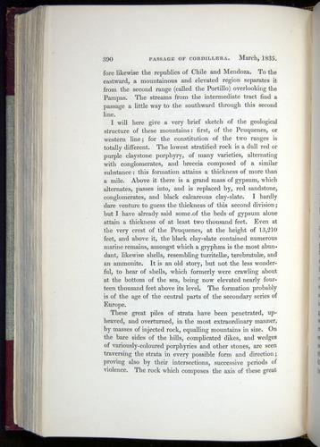 Image of Darwin-F11-1839-00390