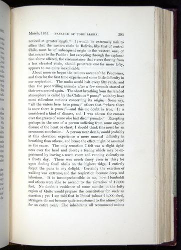 Image of Darwin-F11-1839-00393