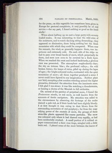 Image of Darwin-F11-1839-00394