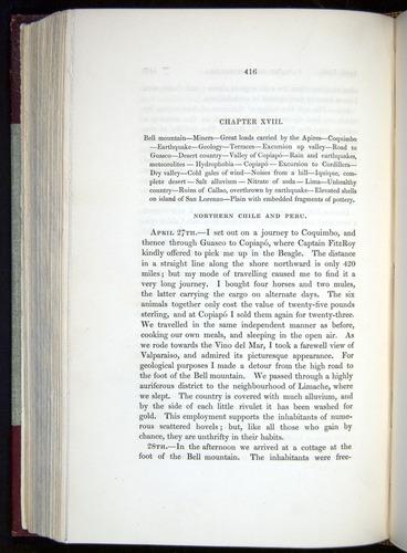 Image of Darwin-F11-1839-00416