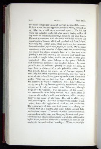 Image of Darwin-F11-1839-00444