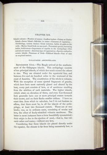 Image of Darwin-F11-1839-00453