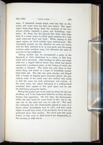 Image of Darwin-F11-1839-00459