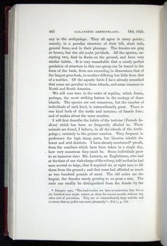 Image of Darwin-F11-1839-00462