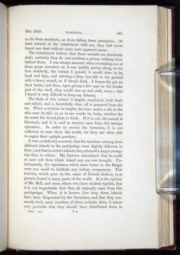 Image of Darwin-F11-1839-00465