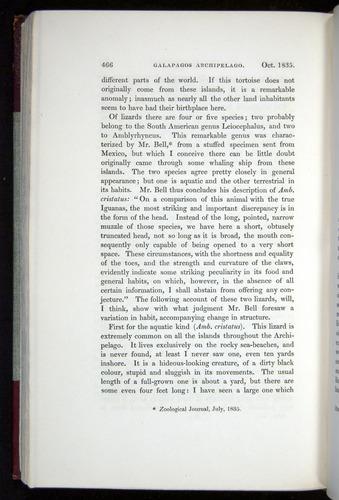 Image of Darwin-F11-1839-00466
