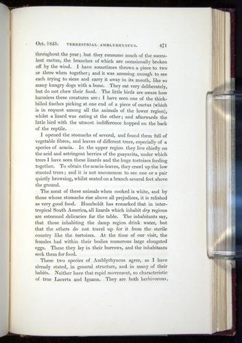 Image of Darwin-F11-1839-00471