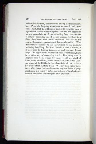 Image of Darwin-F11-1839-00478