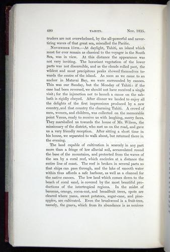 Image of Darwin-F11-1839-00480