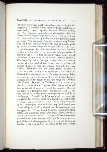 Image of Darwin-F11-1839-00487