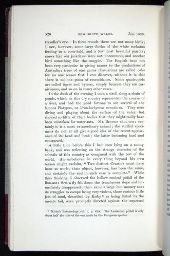 Image of Darwin-F11-1839-00526