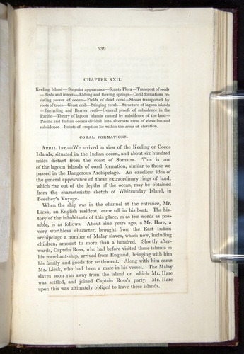 Image of Darwin-F11-1839-00539