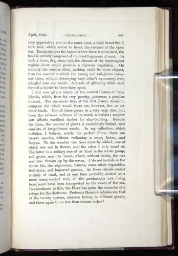 Image of Darwin-F11-1839-00541