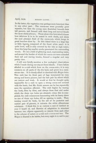 Image of Darwin-F11-1839-00551