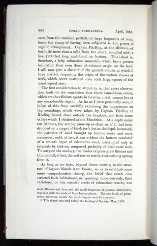 Image of Darwin-F11-1839-00554