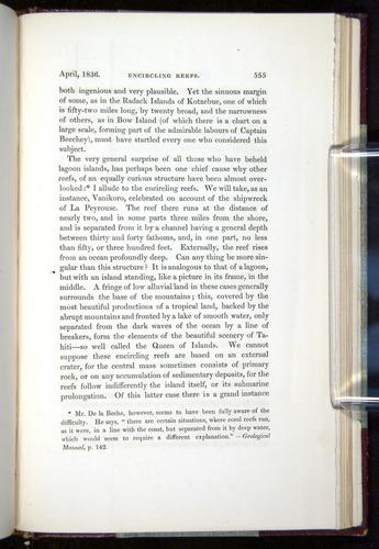 Image of Darwin-F11-1839-00555