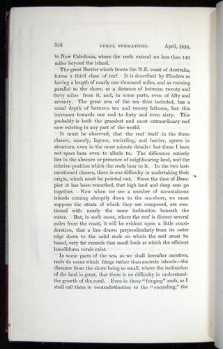 Image of Darwin-F11-1839-00556