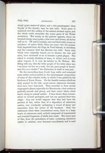 Image of Darwin-F11-1839-00587