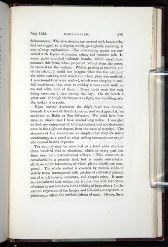 Image of Darwin-F11-1839-00589