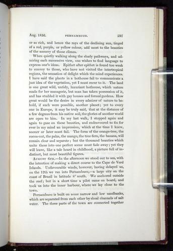 Image of Darwin-F11-1839-00591