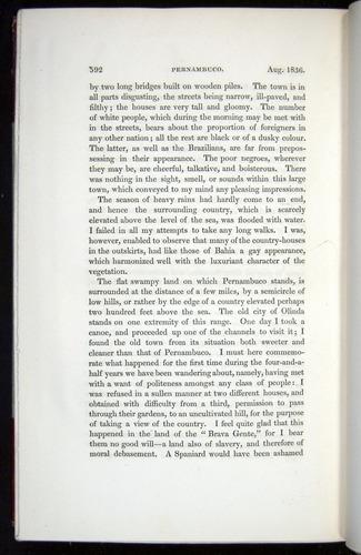 Image of Darwin-F11-1839-00592