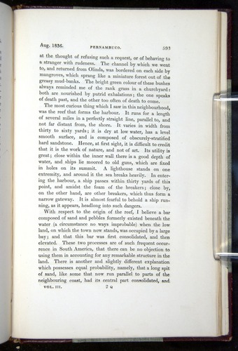 Image of Darwin-F11-1839-00593