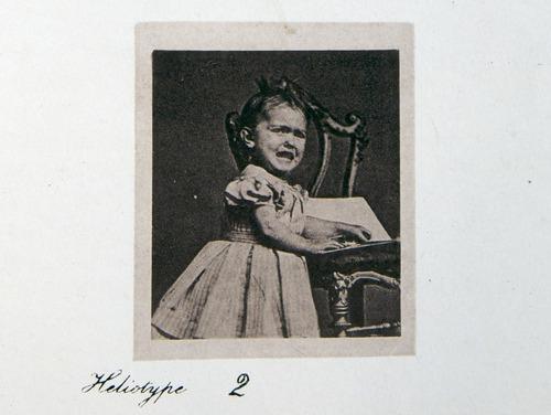Image of Darwin-F1142-1872-zzzz-det-250-a-2