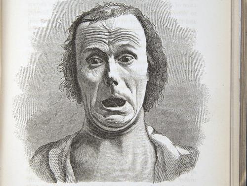 Image of Darwin-F1142-1872-zzzz-det-299