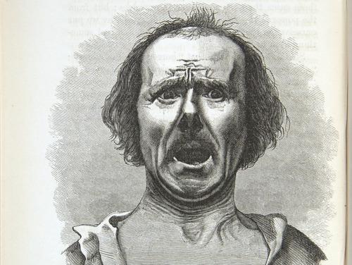 Image of Darwin-F1142-1872-zzzz-det-306