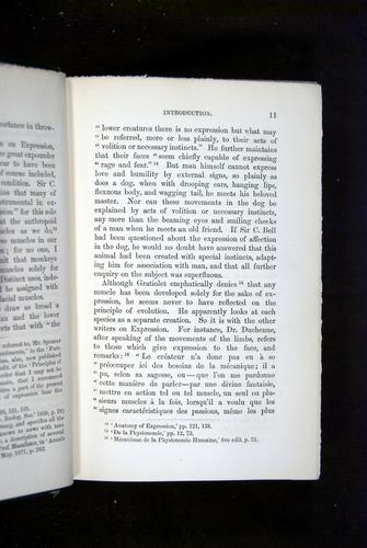 Image of Darwin-F1142-1872-011