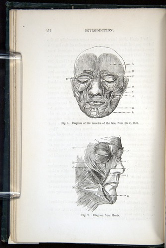 Darwin, Emotions (1872), face