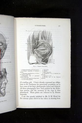 Image of Darwin-F1142-1872-025