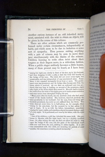 Image of Darwin-F1142-1872-034