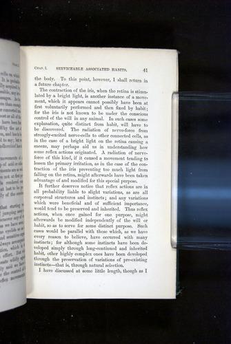 Image of Darwin-F1142-1872-041