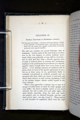 Image of Darwin-F1142-1872-050