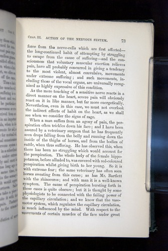 Image of Darwin-F1142-1872-073