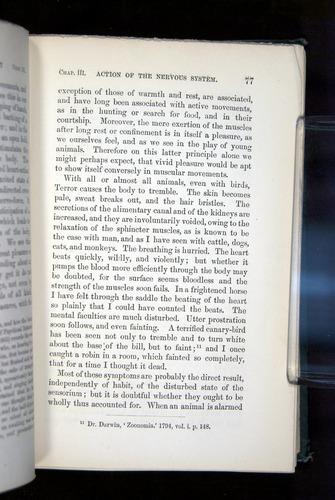 Image of Darwin-F1142-1872-077