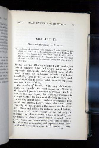 Image of Darwin-F1142-1872-083