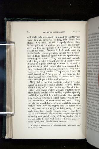 Image of Darwin-F1142-1872-094