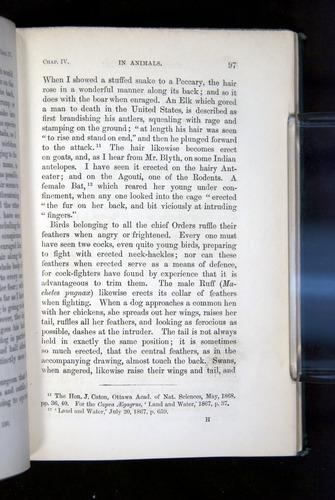 Image of Darwin-F1142-1872-097