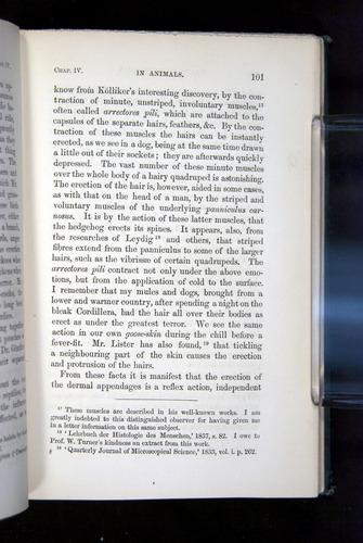 Image of Darwin-F1142-1872-101