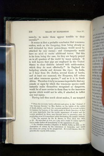 Image of Darwin-F1142-1872-108